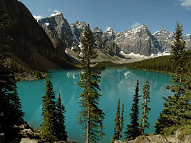 Calgary Rocky Mountains