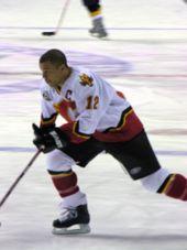 Calgary Sun Sports