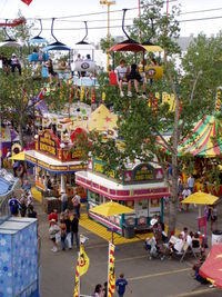 Calgary Stampede Picture
