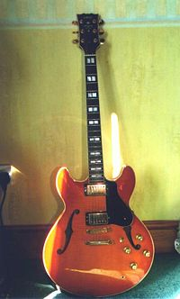 Semi-Hollowbody