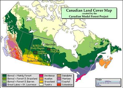 Vegetation cover in Canada