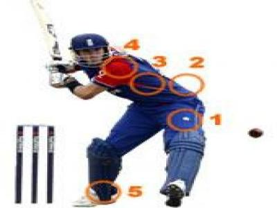 Common injury sites in Cricket